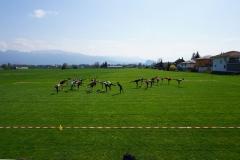 17_trainingsweekend11