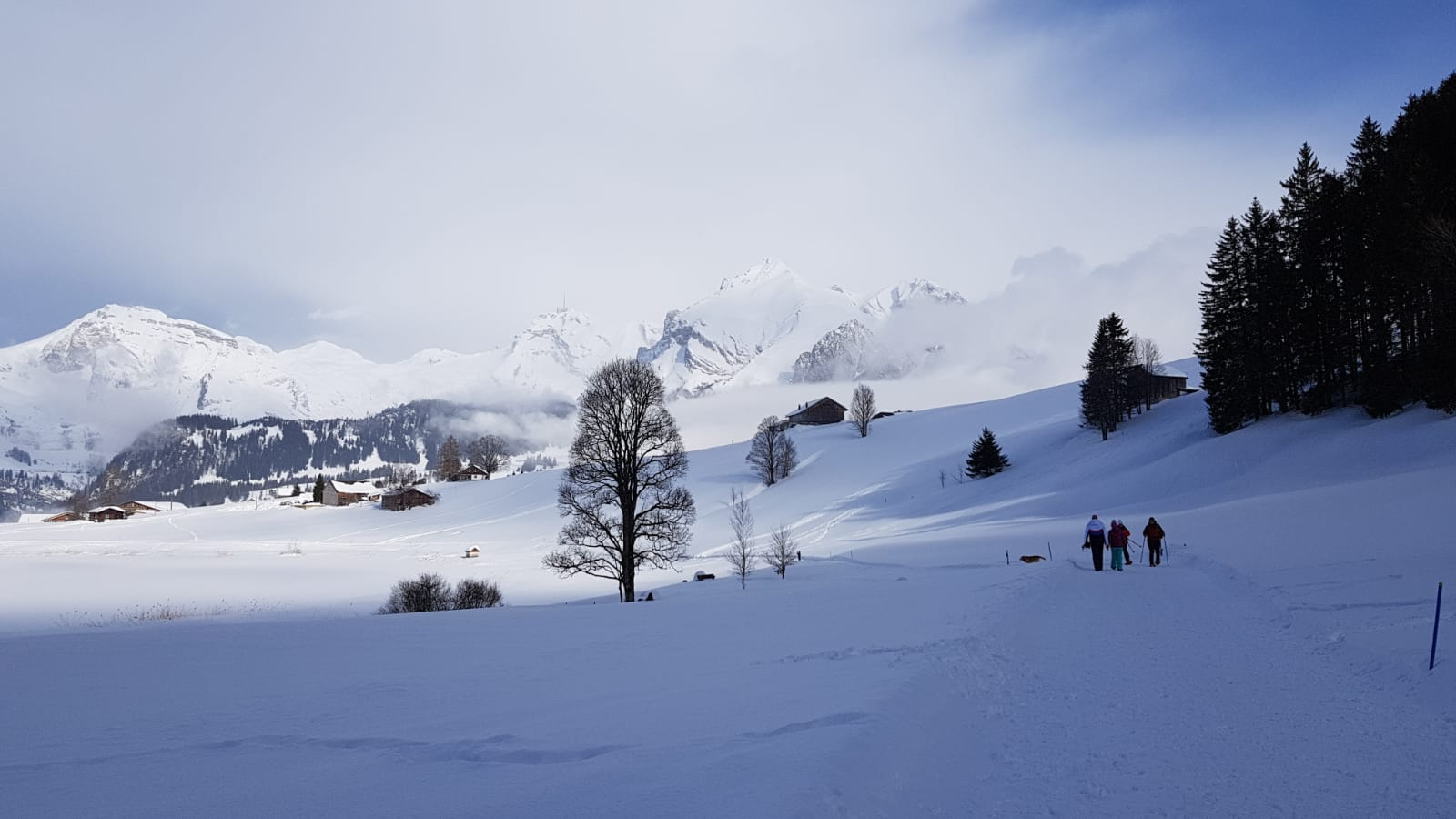 19_Schneeschuhtrail (6)