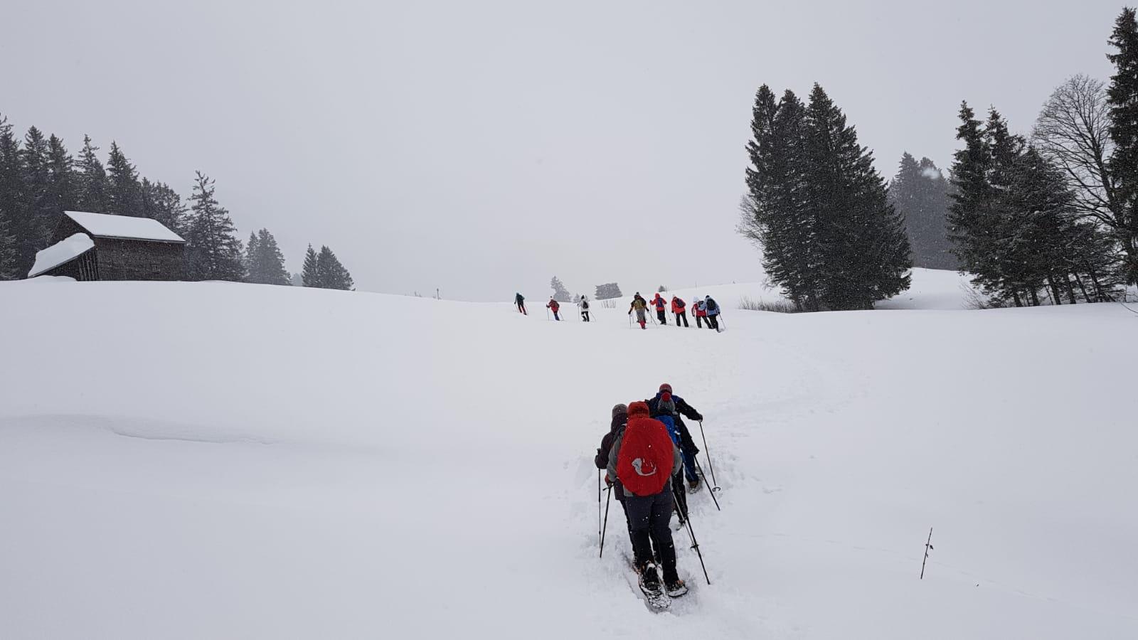 19_Schneeschuhtrail (8)